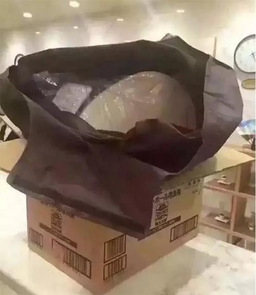 瘋搶之後就去偷?  大陸客偷日本酒店馬桶蓋