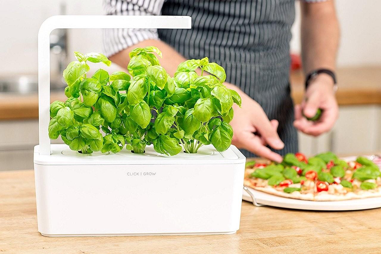 引入太空種植技術   Click and Grow 智能盆栽輕鬆種菜