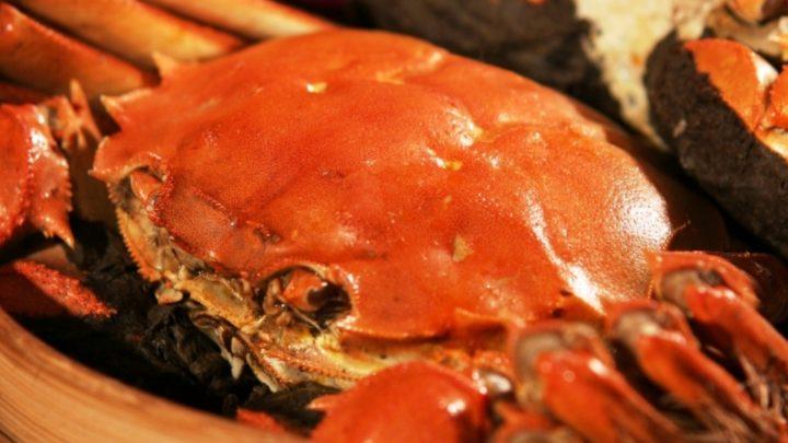 終於都有得食!    逸東軒推出秋季限定大閘蟹菜單