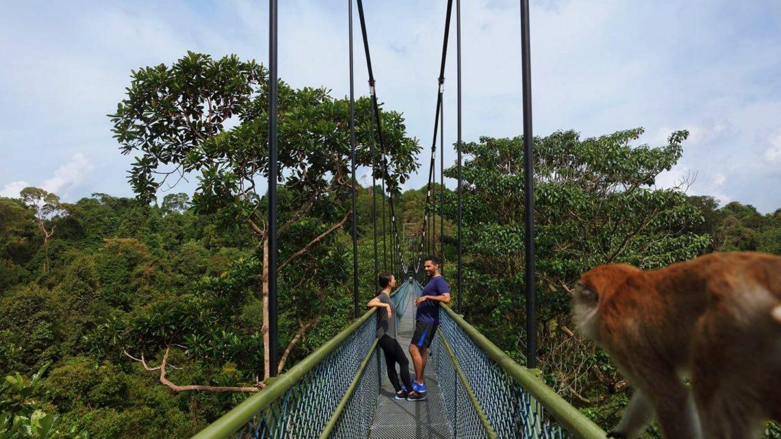新加坡旅遊局召集「 極限挑戰者 」  「 長跑夫妻 」挑戰獅城戶外體驗
