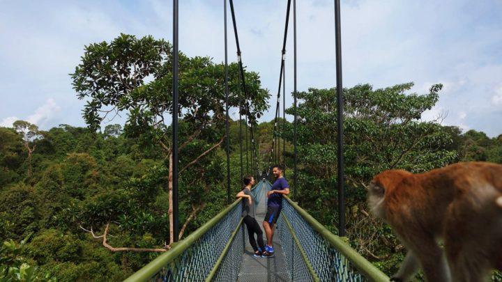 新加坡旅遊局召集極限挑戰者 「長跑夫妻」挑戰獅城戶外體驗