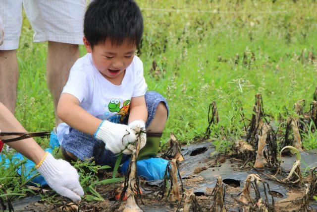 皇家美素佳兒 推私人飛機親子之旅 體驗日本東京農場豪華露營