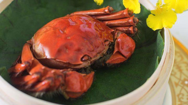 米芝蓮一星中菜廳逸東軒推時令蟹宴   大閘蟹 / 膏蟹套餐蟹迷至愛