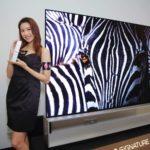 LG OLED TV ZX 8K 電視系列  自發光技術展現「 Real 8K 」技術