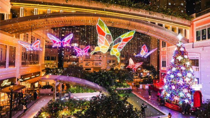 利東街 Butterflies of Hope  1月 7-10日特別加映飄雪限定