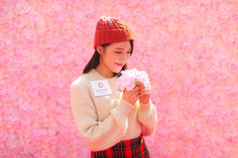 """蝴蝶翩翩少女粉紅花牆 7 """"Butterfly Fluttering Pink Wall"""" 7"""