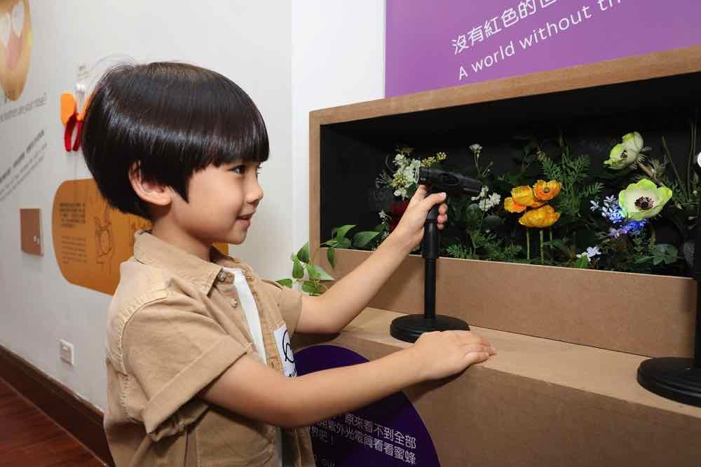 龍虎山環境教育中心「動物的煩惱日常2021」展覽  十大遊戲體驗動物生活